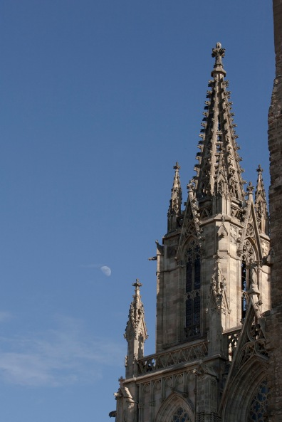 Catedral y